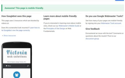 Mobile Friendly Web Searching